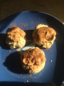 Choosing  homemade vegan biscuit stones today