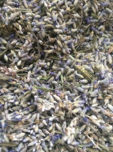 Tiny Lavender Miracles